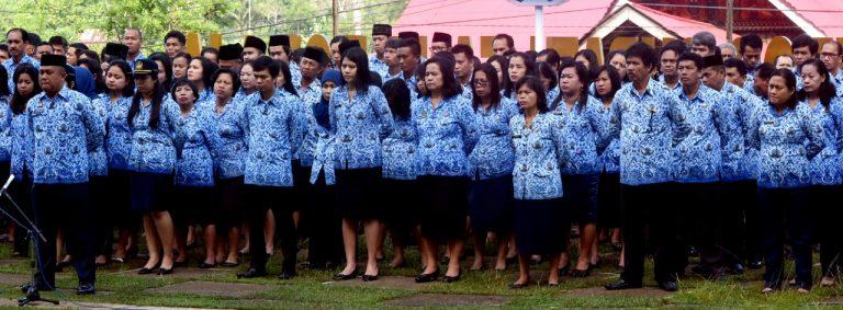 Pengumuman Hasil Test Pelaksanaan Seleksi Kompetensi Bidang (SKB) CPNS Tana Toraja 2019
