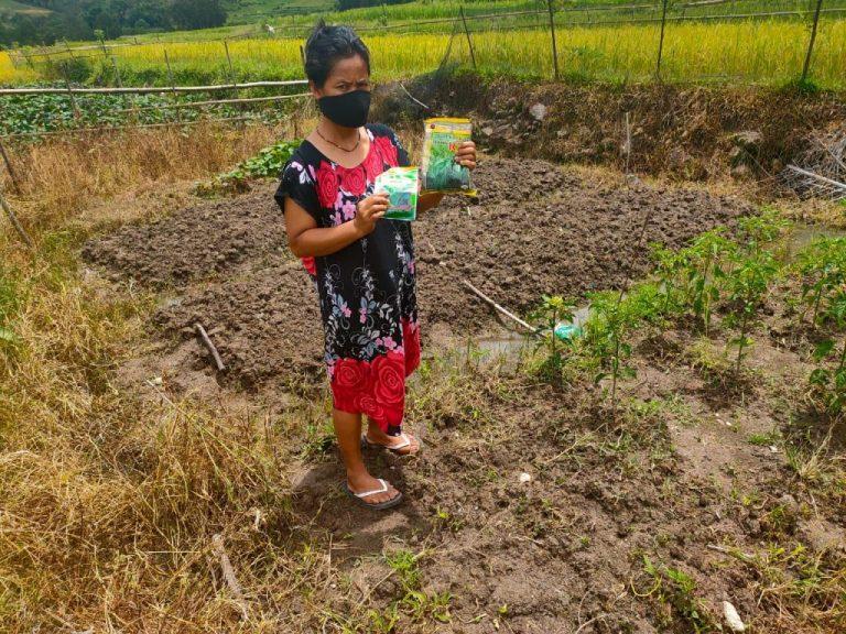 Dampak Corona, Dinas Pertanian Siapkan Bibit Gratis untuk Masyarakat yang Mau Tanam Sayur