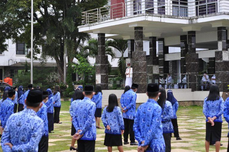 Bupati Tana Toraja menyerahkan 113 SK CPNS Formasi Tahun 2019